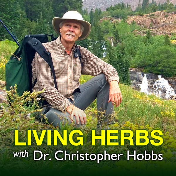 Living Herbs Podcast