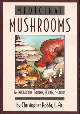 Medicinal Mushrooms — An Exploration of Tradition, Healing & Culture